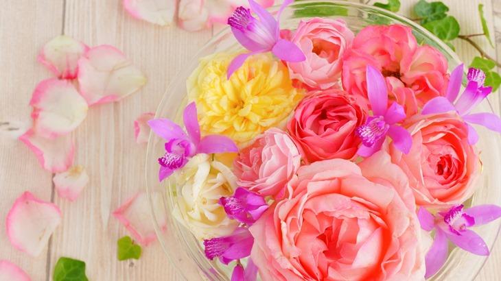 色とりどりのお花