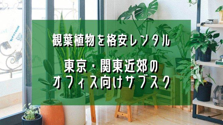 観葉植物を格安レンタル♪東京・関東近郊のオフィス向けサブスク